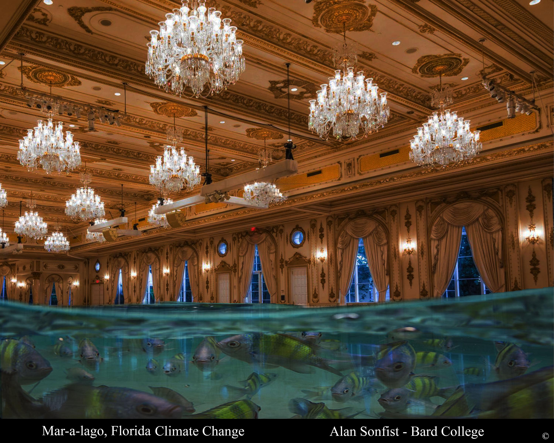 miraculous entrance decoration.htm eus news   events  eus news   events