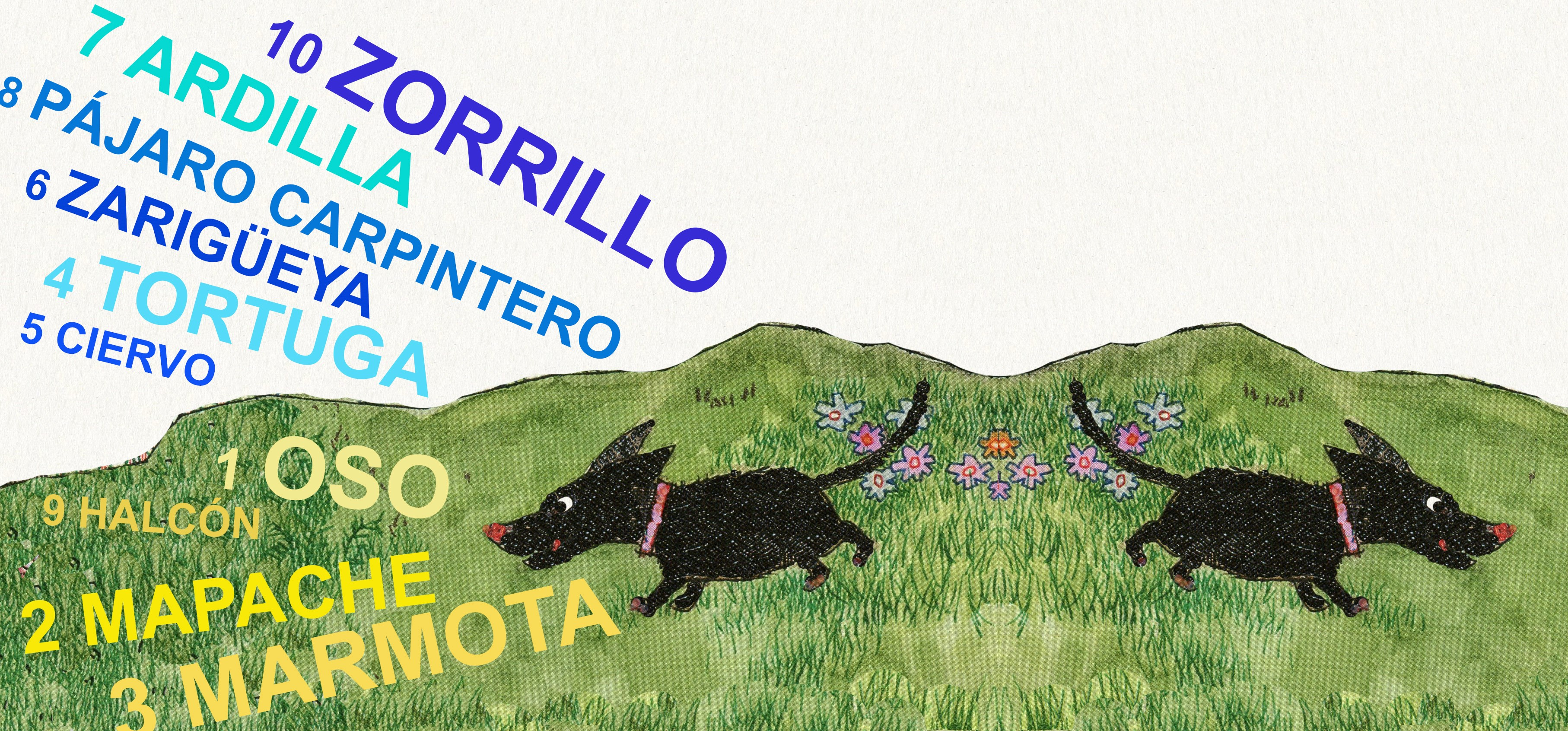 Escribe en inglés los nombres de estos animales que viven en el Valle del Hudson, ilustraciónde Cristina Brusca