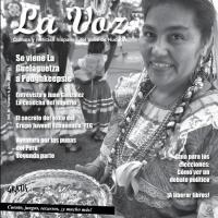 La Voz julio 2012